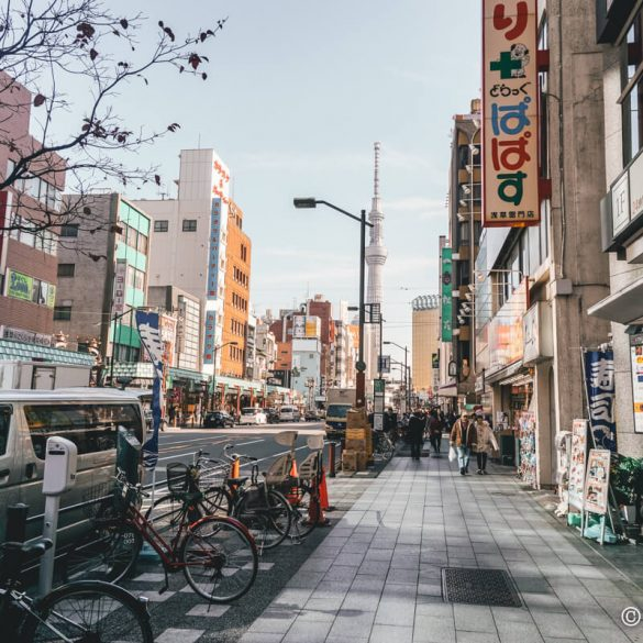 solo trip to Tokyo Japan