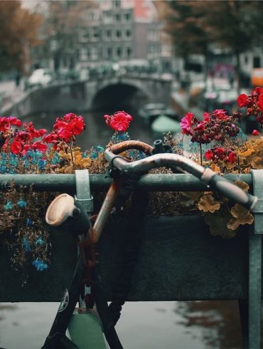 expat living in Amsterdam Netherlands