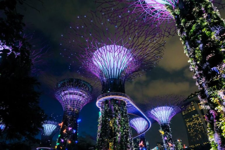 best things to do in Singapore Gardens by the Bay