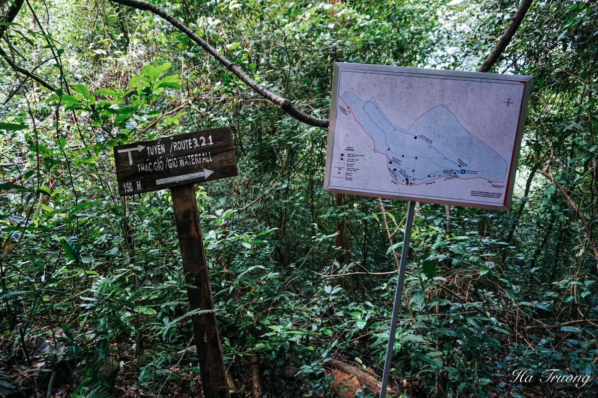 guide to Botanical garden Phong Nha Ke Bang Vietnam