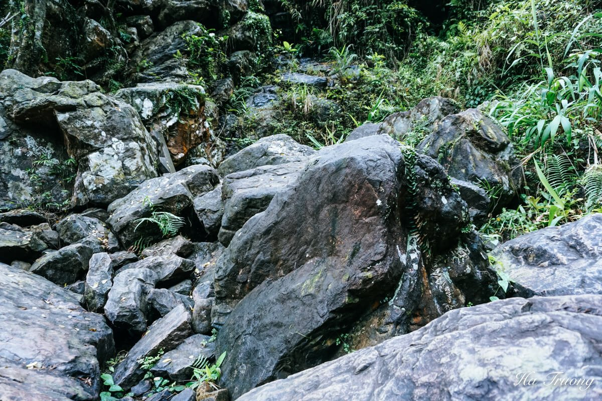 beautiful nature in Phong Nha Botanical garden
