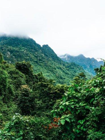 best things to do in Botanical garden Phong Nha Ke Bang Vietnam