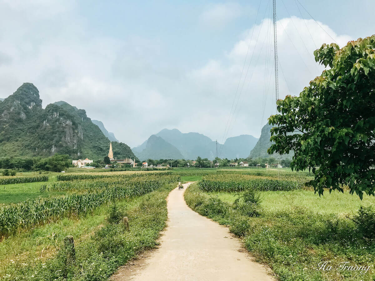 best things to do in Phong Nha Ke Bang
