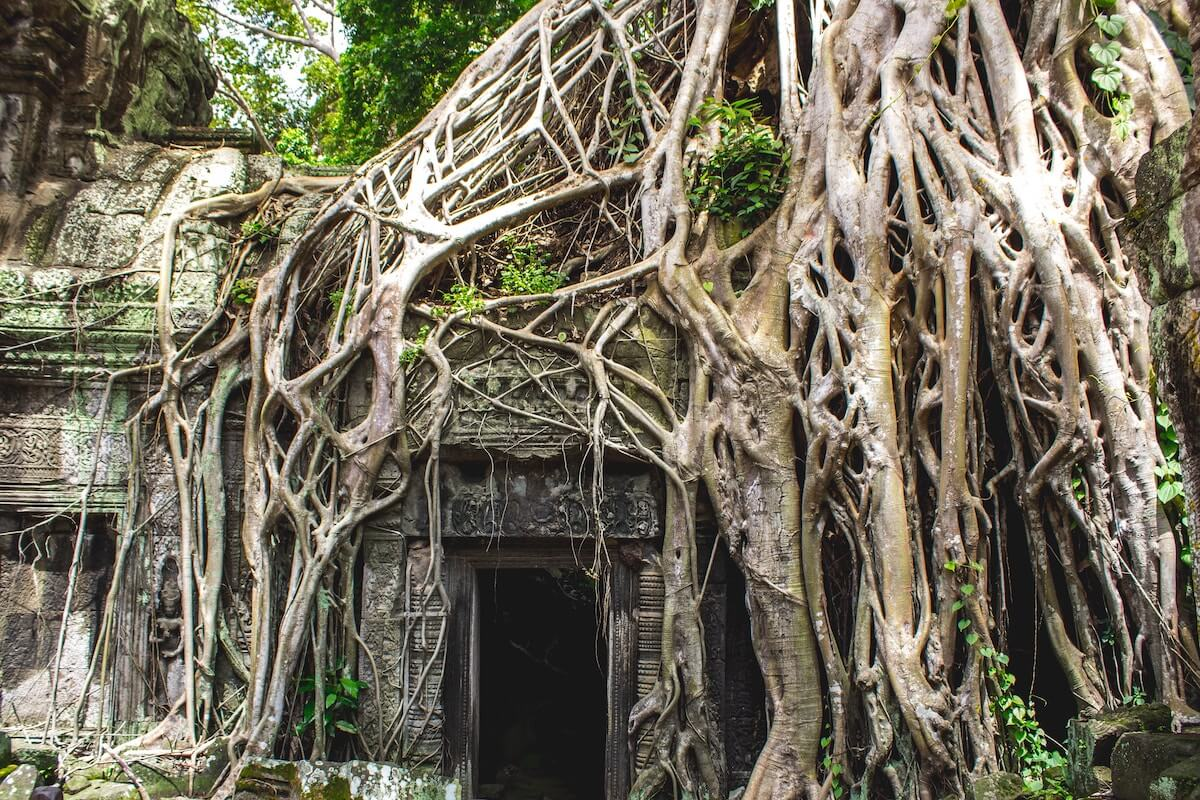 how to get from Phnom Penh to Siem Reap Cambodia by bus flight private car