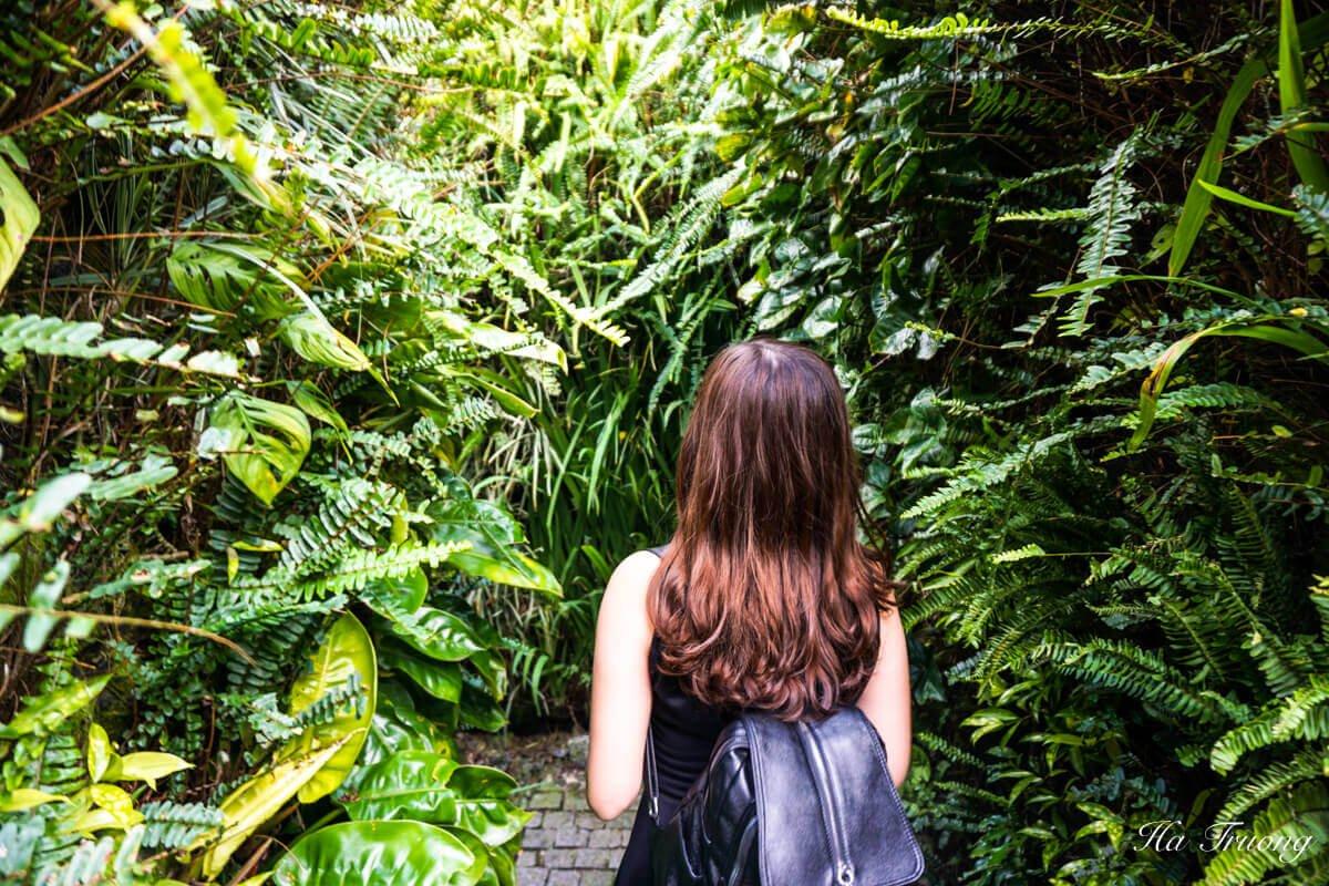 Ba Na Hills Vietnam garden