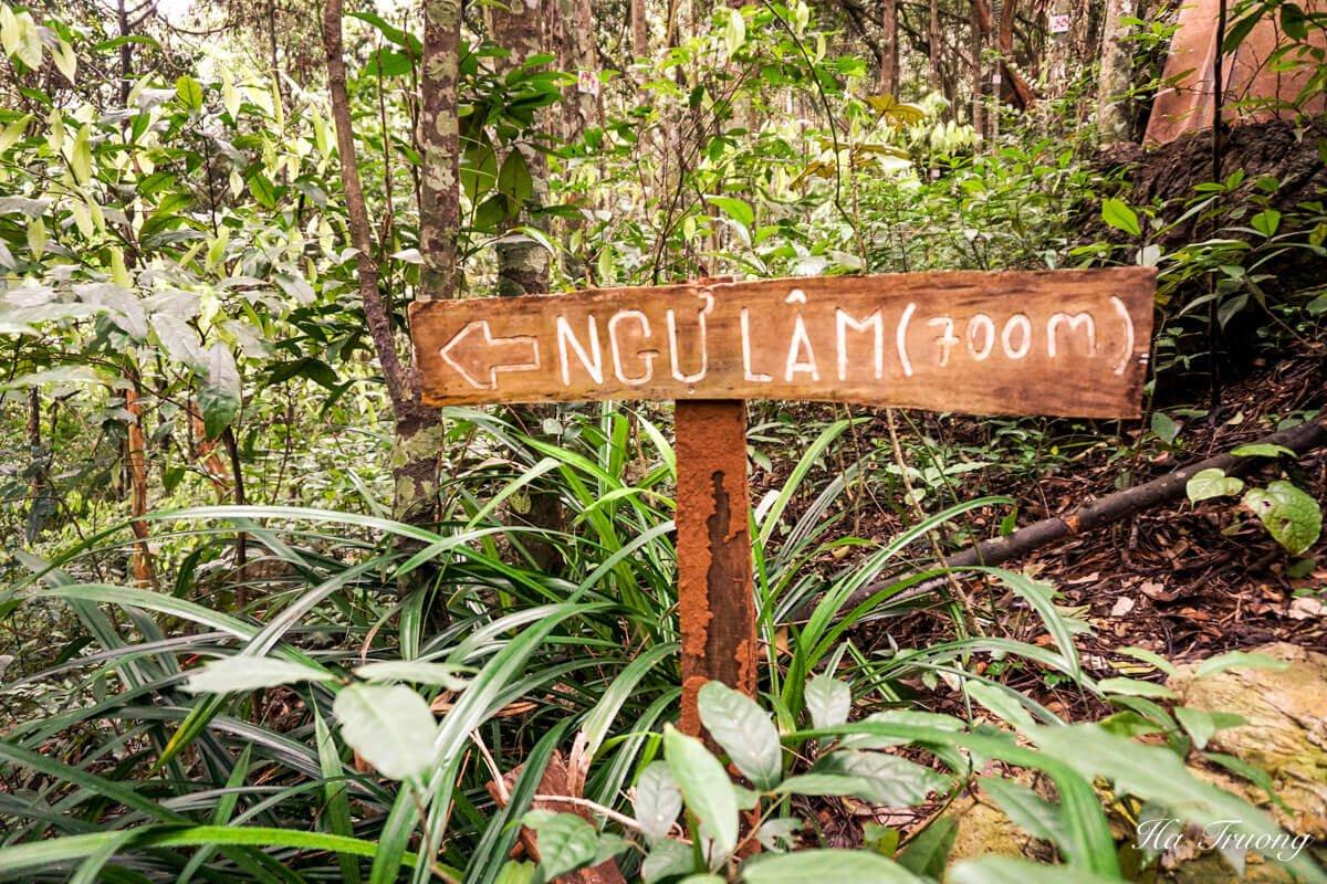 Cat Ba National Park Ngu Lam Peak