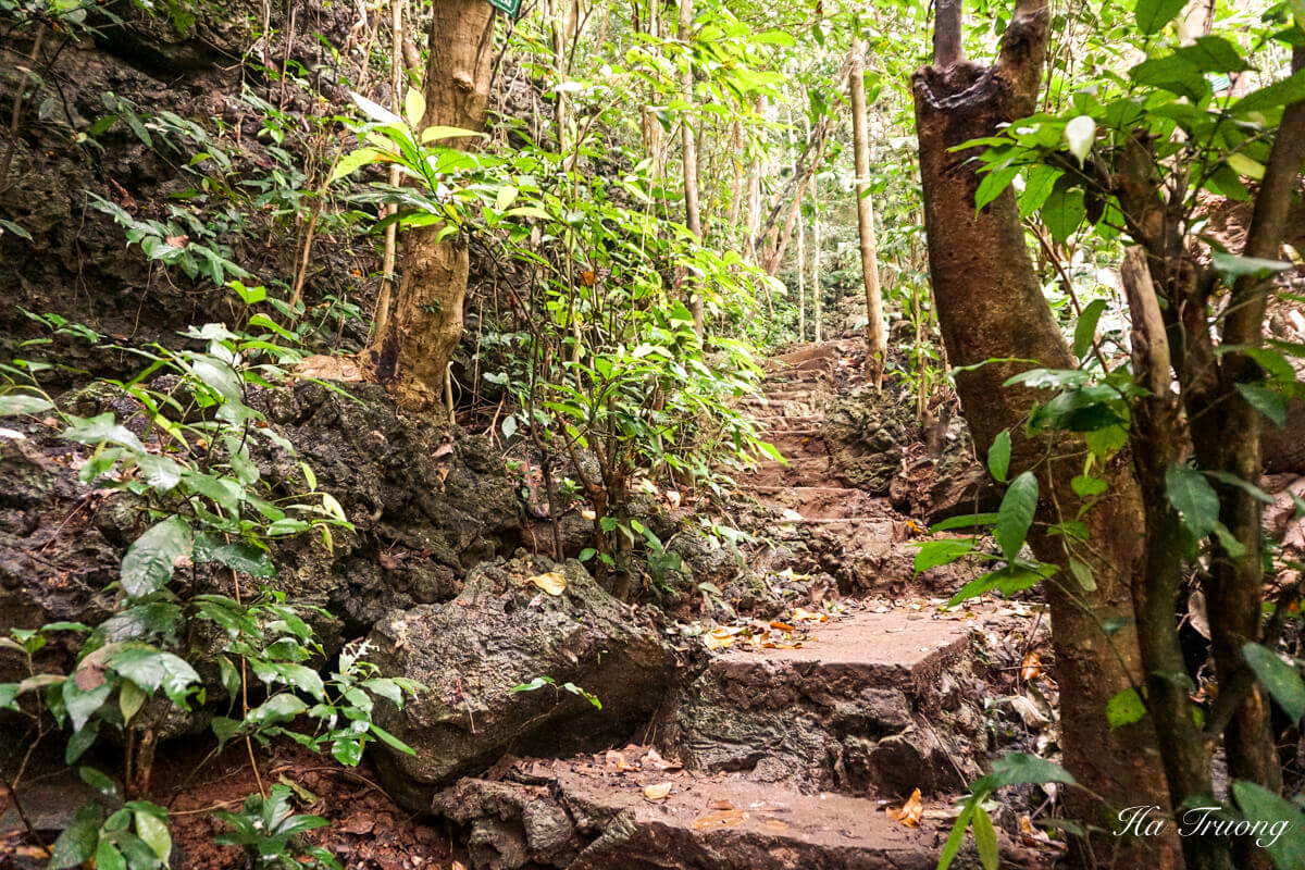 Cat Ba National Park hiking steps
