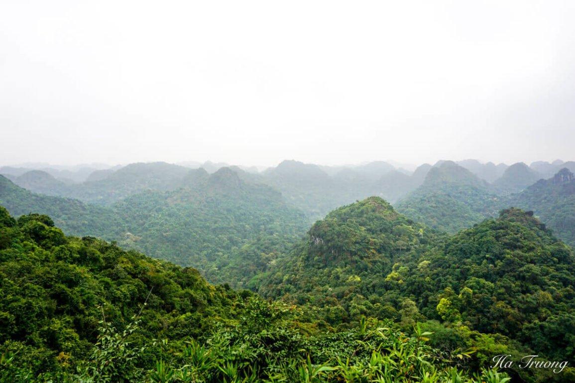 Cat Ba National Park Vietnam travel guide