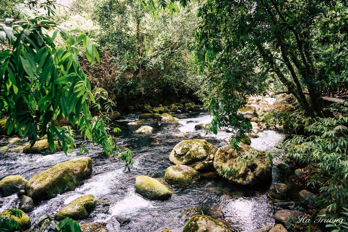 beautiful Vietnam nature