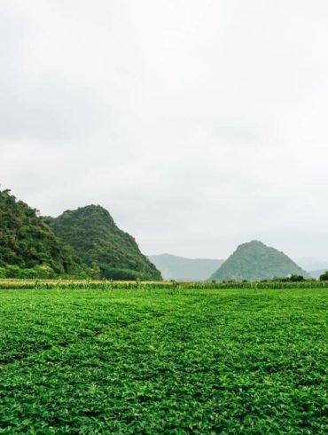 Dong Hoi to Phong Nha Ke Bang Vietnam