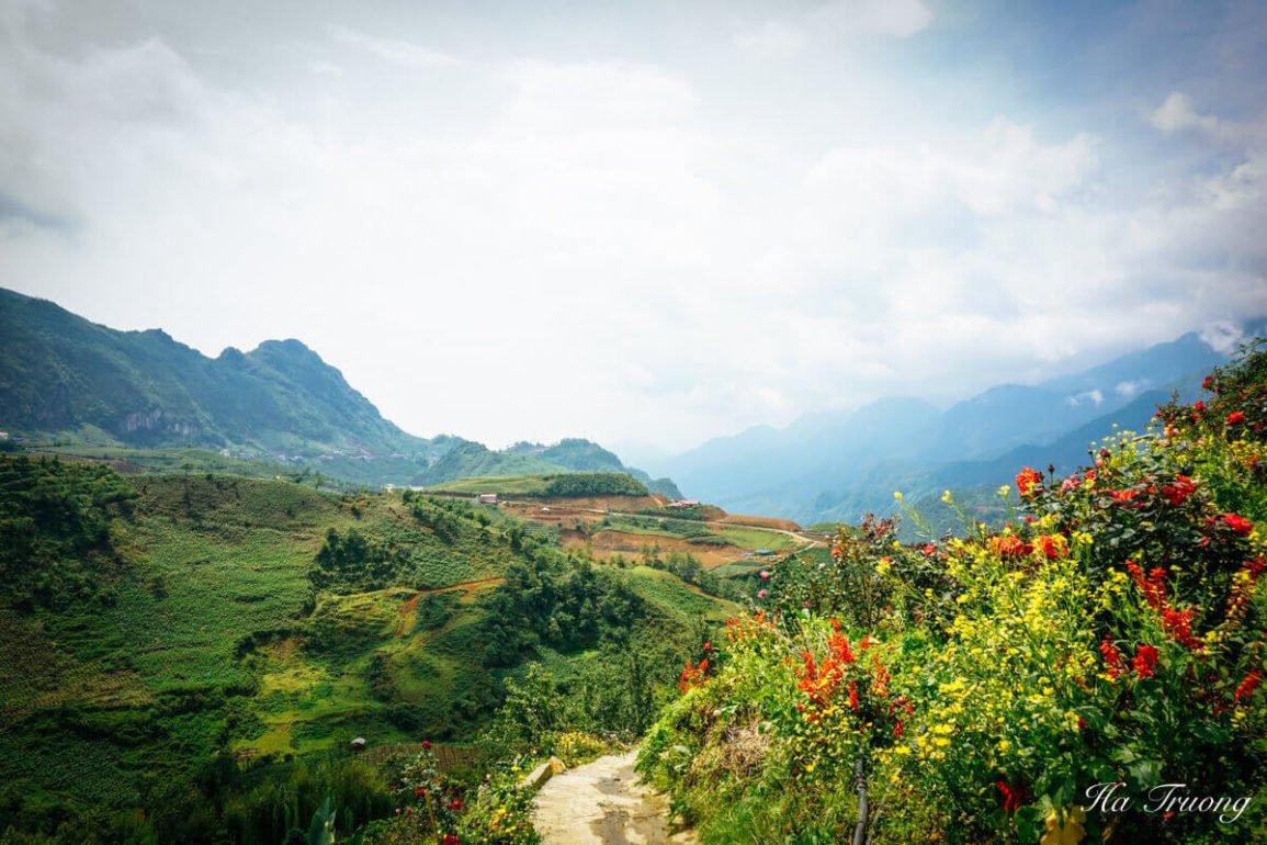 plan trip to Vietnam