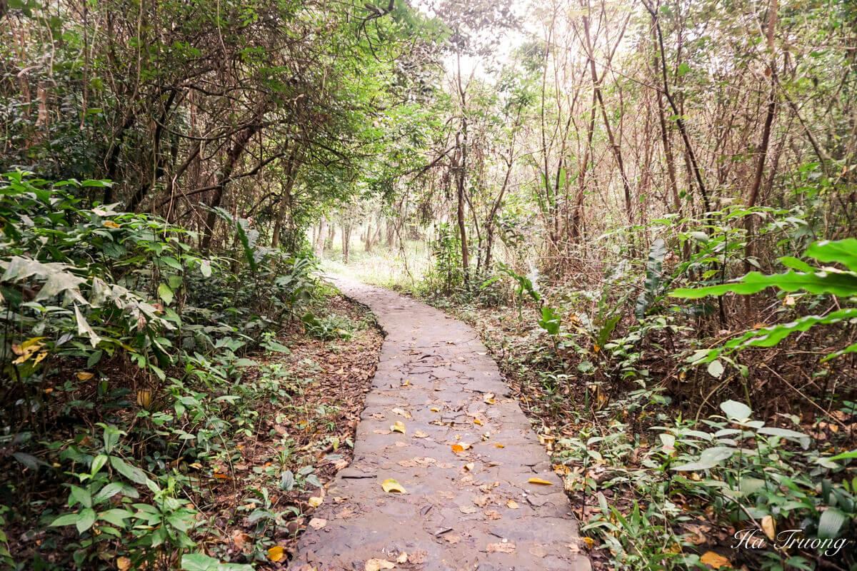Trung Trang cave Vietnam visit