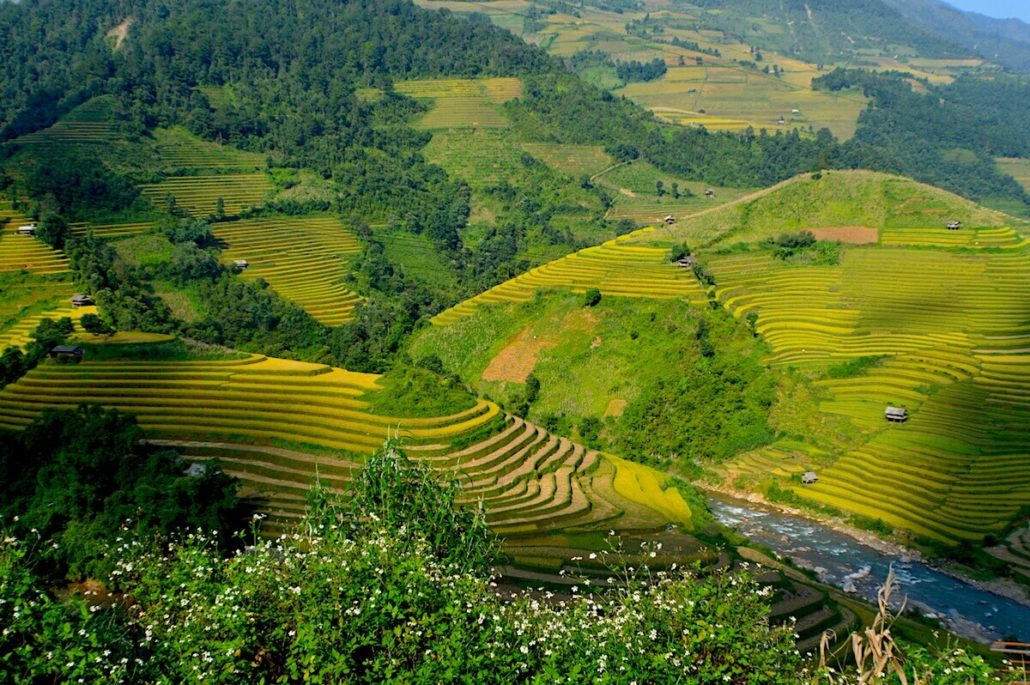 Mu Cang Chai in vietnam   Vietnam travel, Laos travel