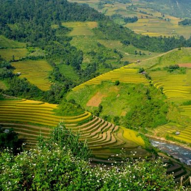 Hanoi to Mu Cang Chai Vietnam