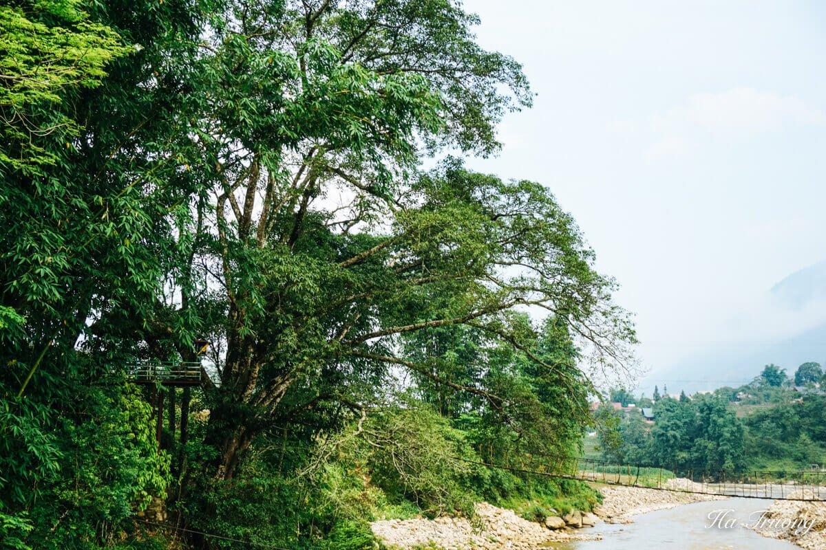 Ta Van bridge Sapa Vietnam