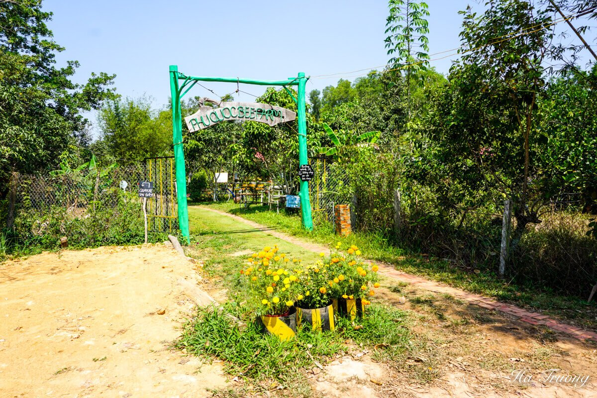 Bee farm in Phu Quoc island Vietnam