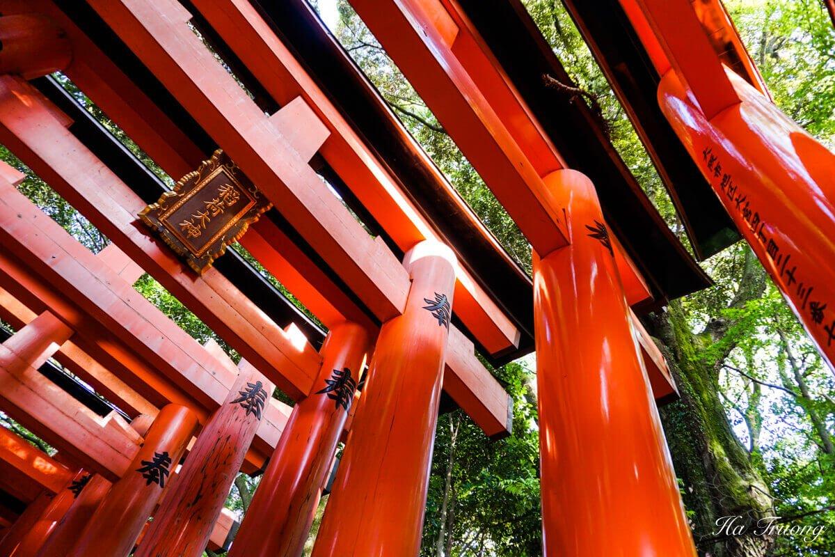 Fushimi Inari Shrine Kyoto Japan Torii gate