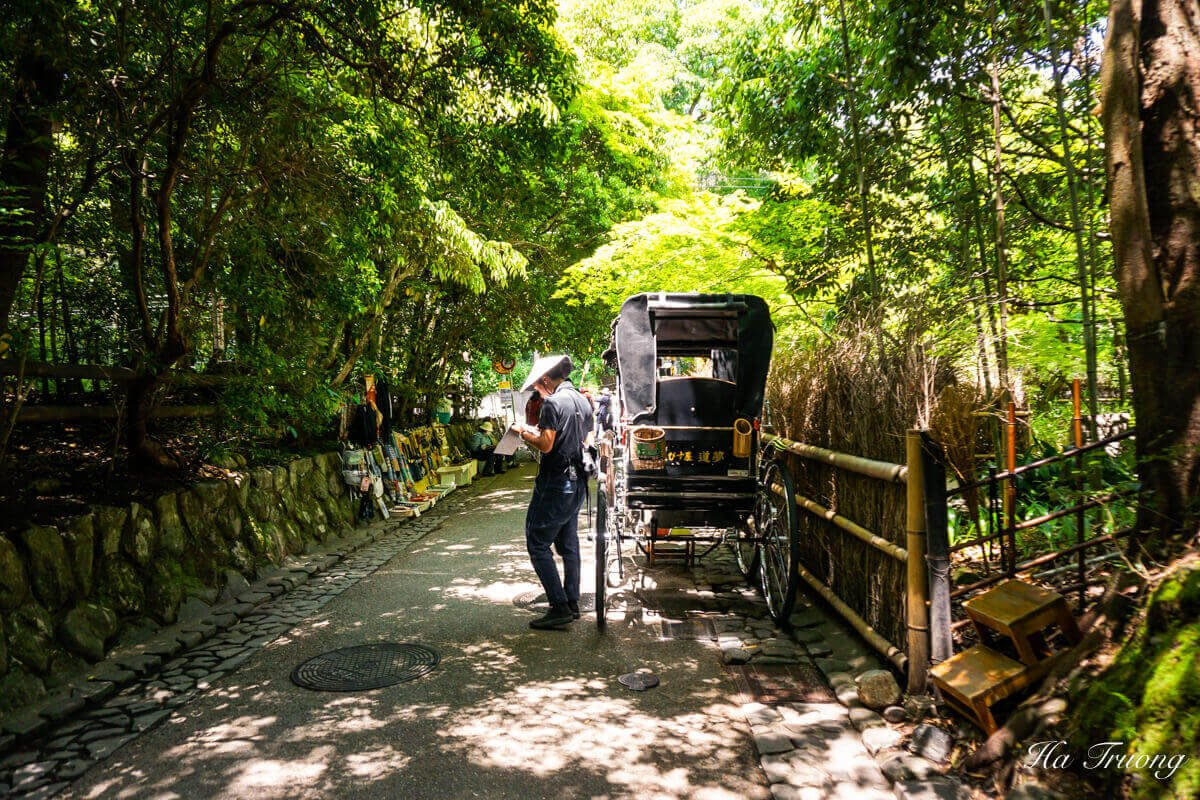 Sagano Bamboo Forest Kyoto Japan rickshaw