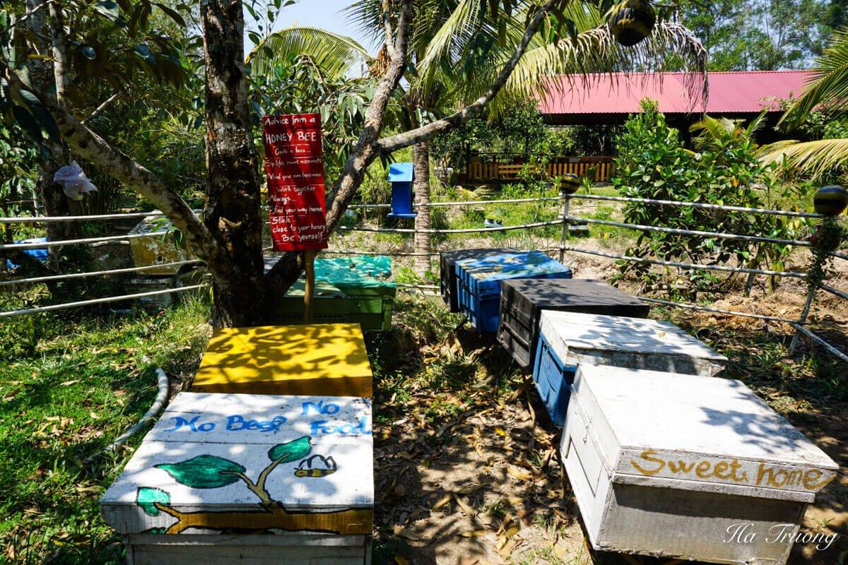 Phu Quoc bee farm Vietnam