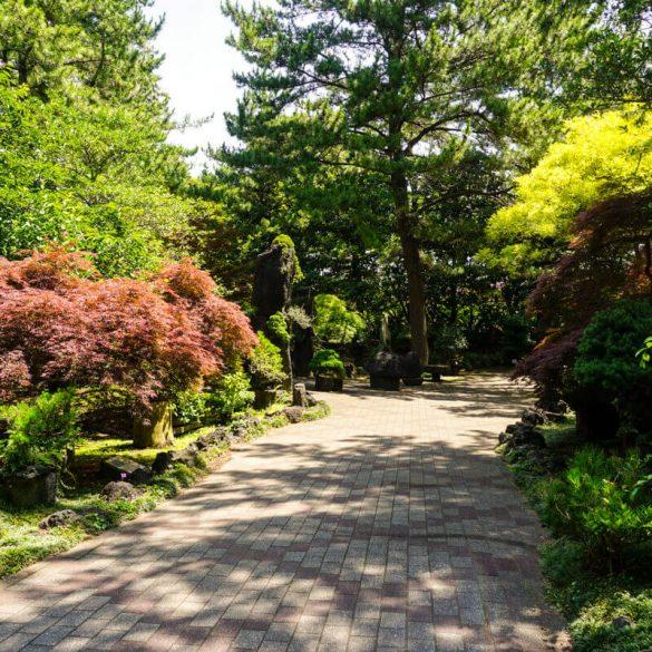 Hallim park South Korea