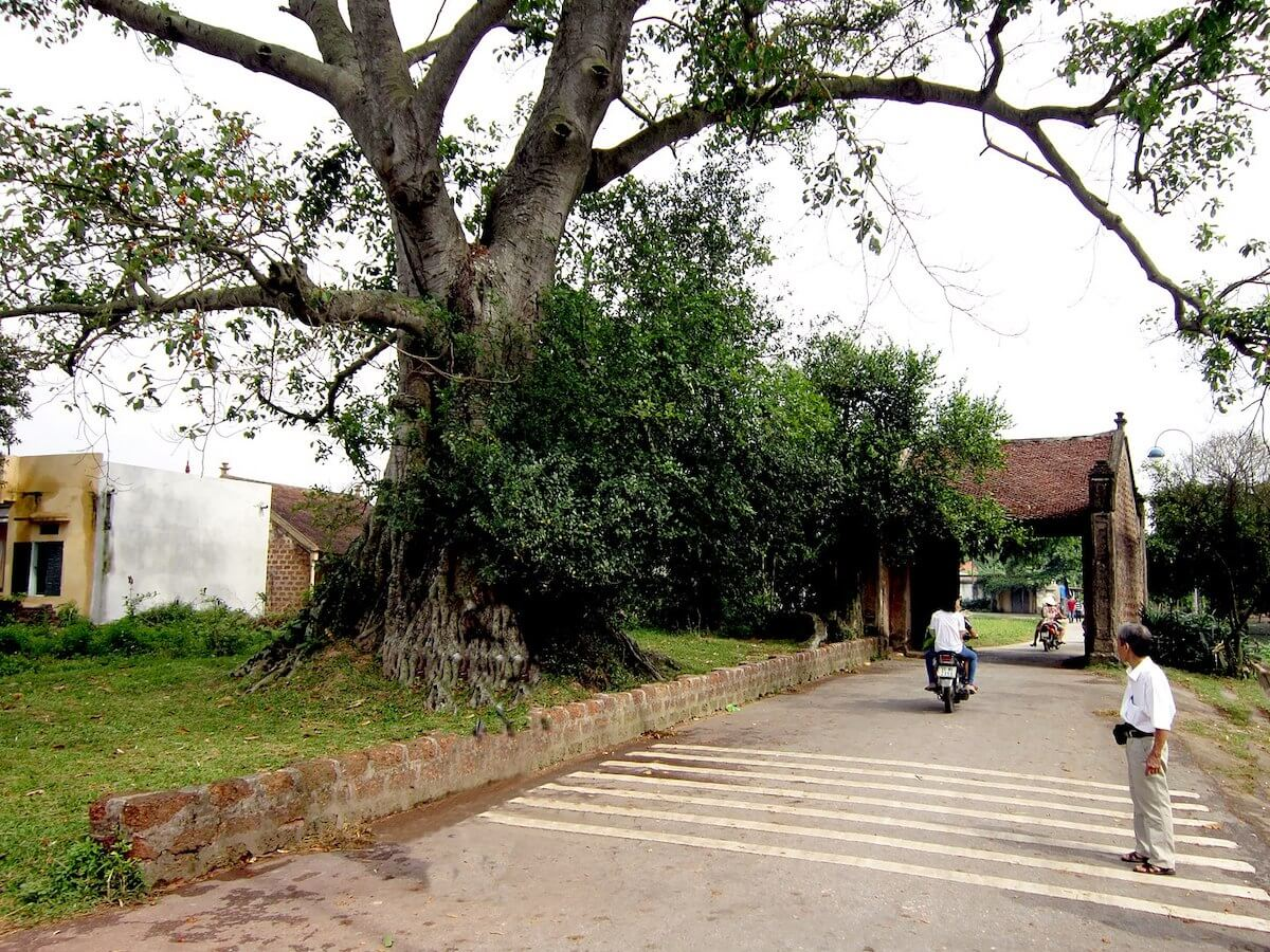 Duong Lam village Vietnam