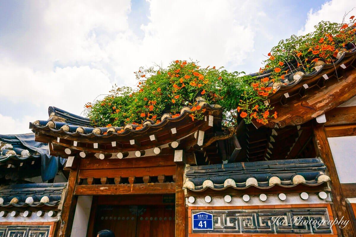 Seoul houses roof