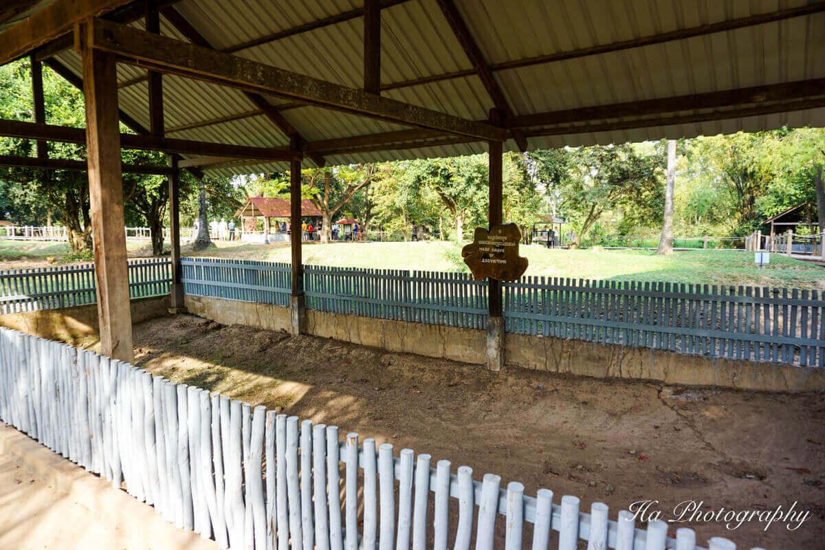 Mass grave Killing Field Cambodia