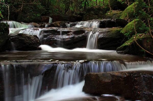 Tranh stream Phu Quoc Vietnam