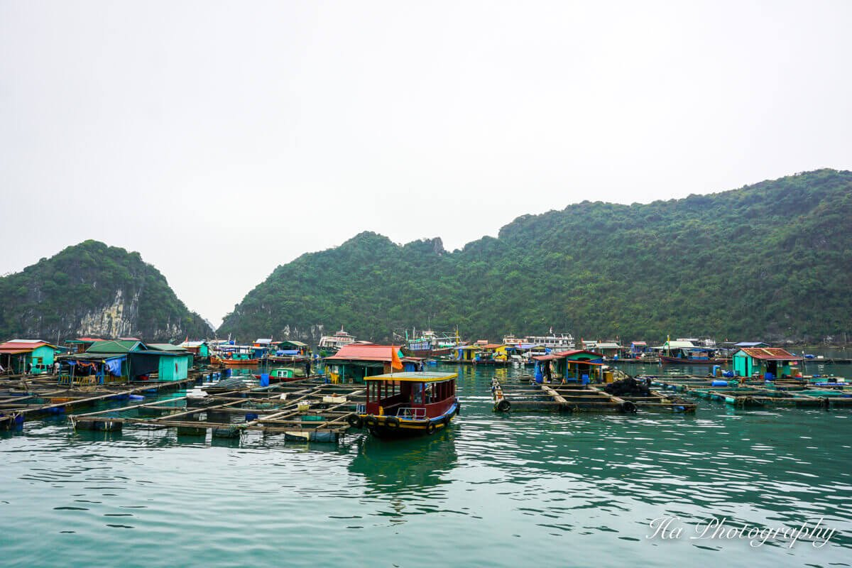 raft houses Lan Ha Bay Vietnam