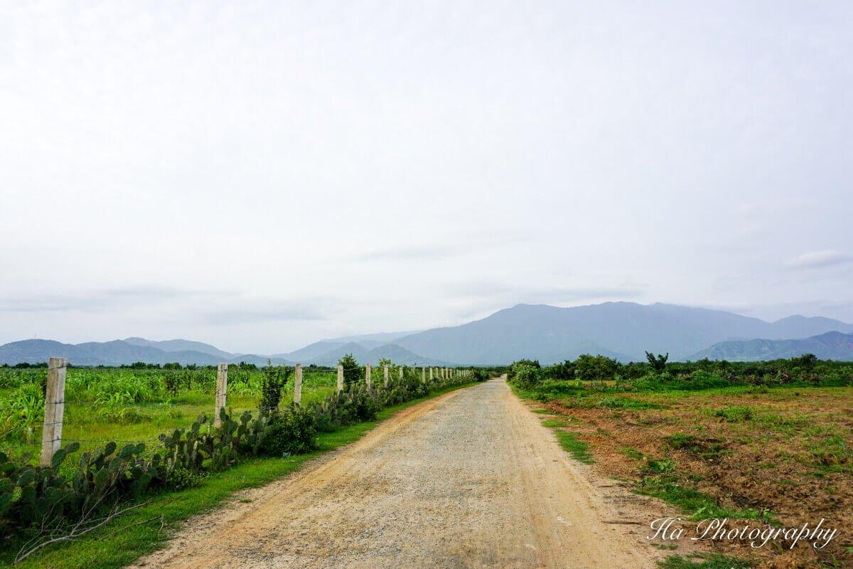 Ninh Thuan Vietnam