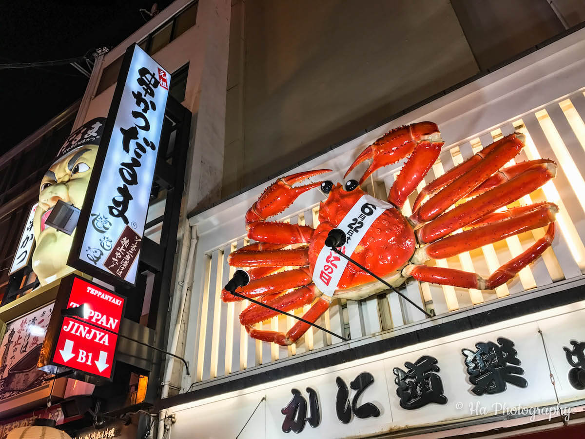 Osaka Dotonbori Japan