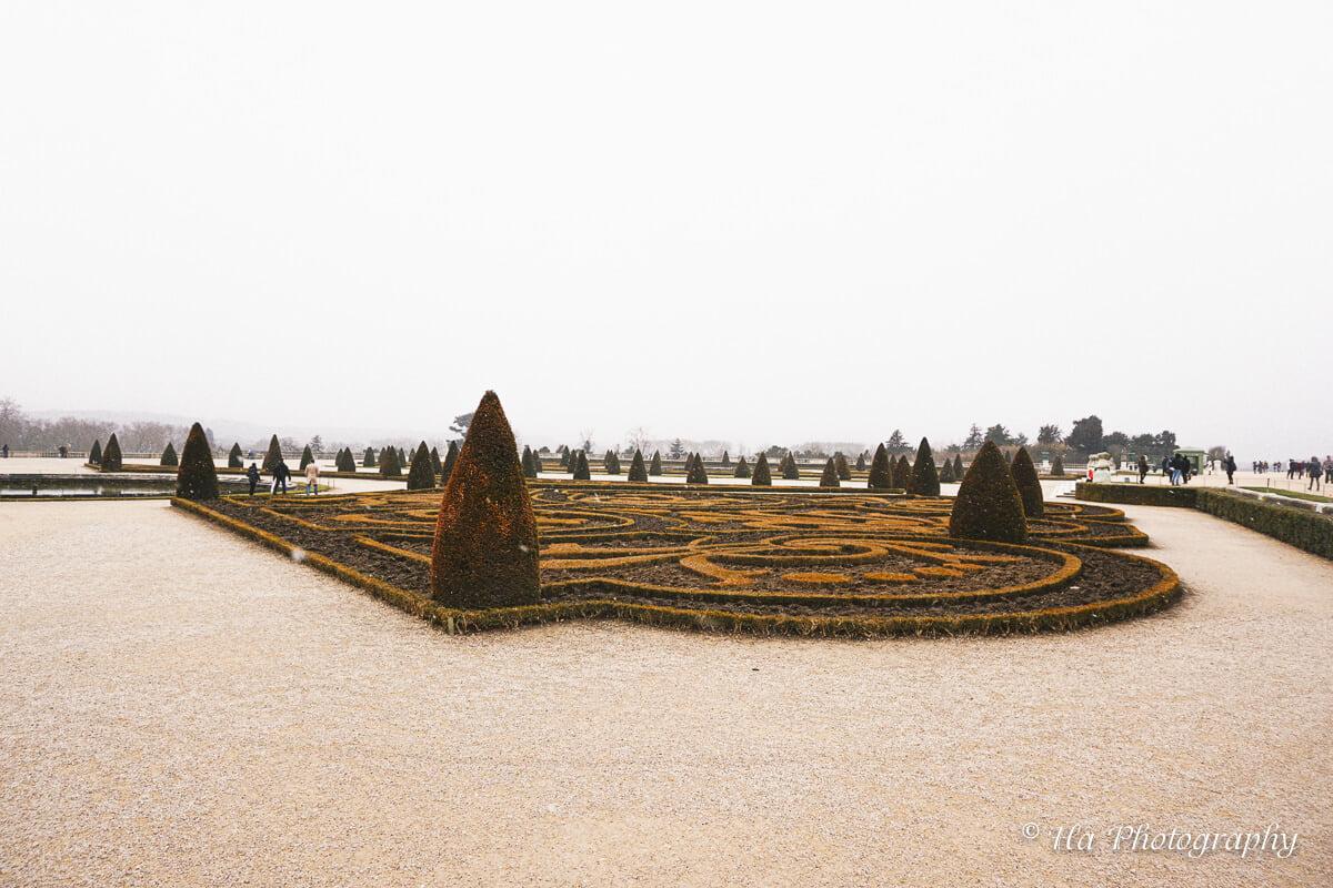 Palace Versailles tree France.