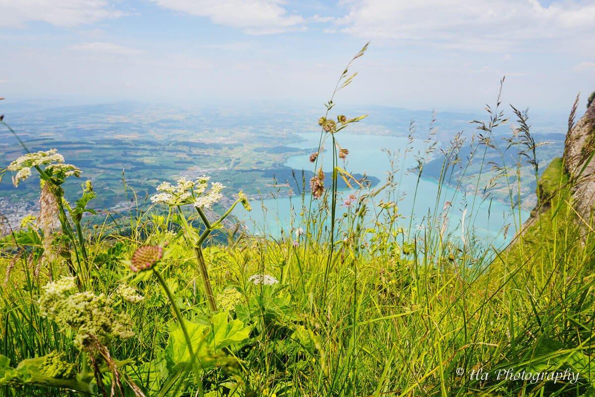 Mount Rigi Switzerland.
