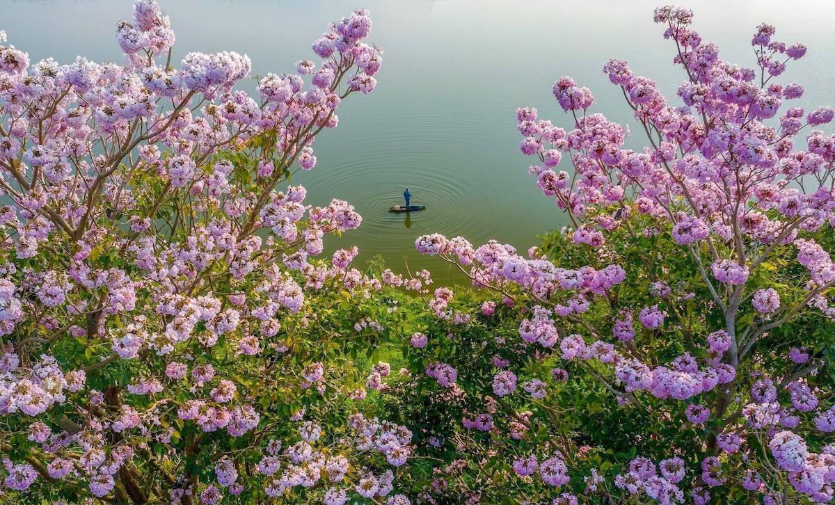 Nam Phuong lake Bao Loc Vietnam.