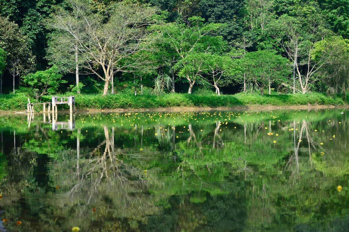 lake Cuc Phuong Park Vietnam.