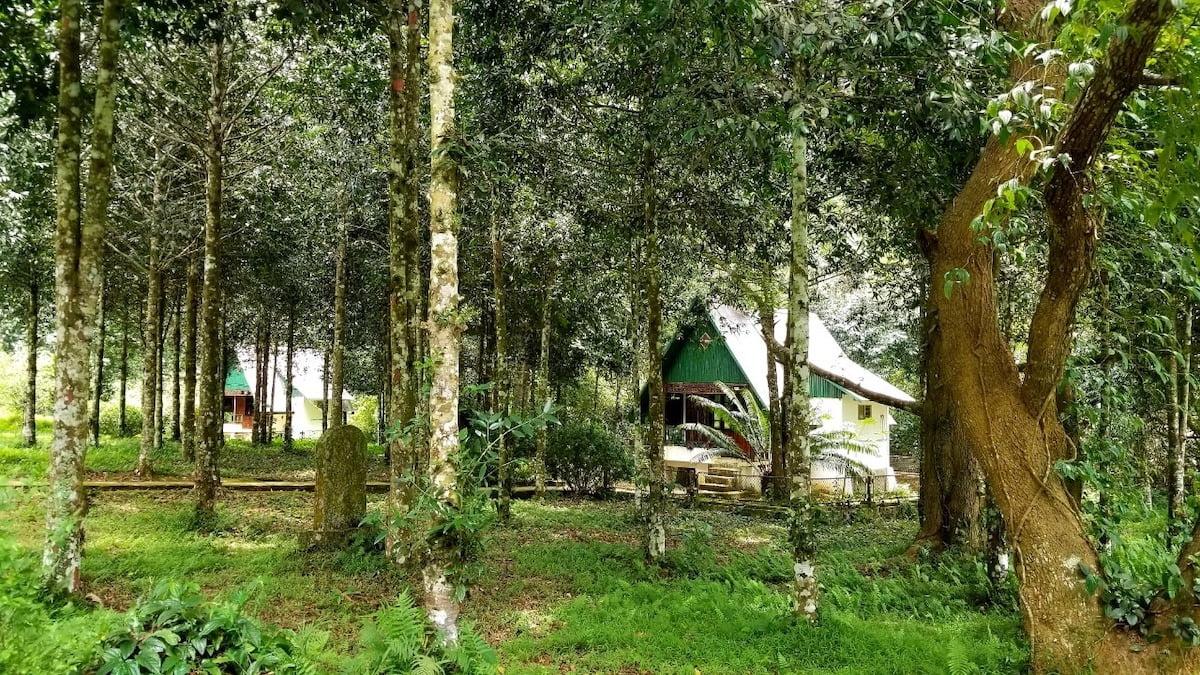 Cuc Phuong accommodation Vietnam.
