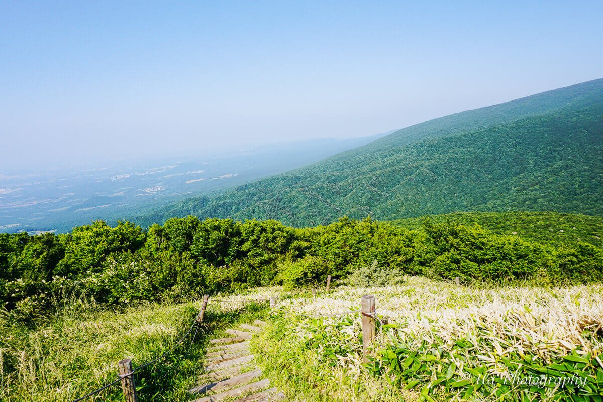Mount Hallasan hiking trail Jeju island Korea.